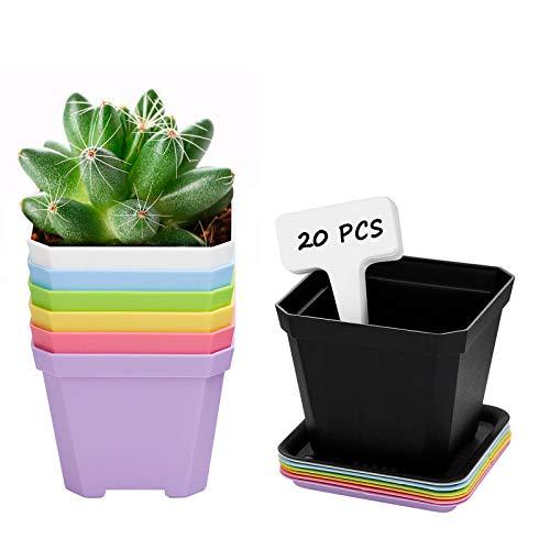 ANSUG 7 Pezzi da 10 cm Vaso da Fiori in Plastica Quadrato con Vassoi, Vasi di Fiori in Plastica Spessi Colorati Mini Vasi per Piante Grasse per Balcone Ufficio Giardino