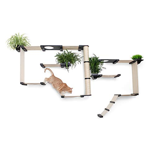CatastrophiCreations Gardens Set for Cats Multiple-Level Wall Mounted Scratch, Hammock Lounge, Play & Climbing Activity Center Furniture Cat Tree Shelves