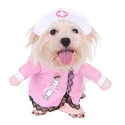 Pet Street Animal Tenue infirmière Costume d'Halloween Vêtements de Noël avec chapeau