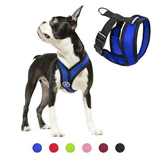 Gooby Dog Harness - Blue, Large - Comfort X Head-in Small Dog Harness with Patented Choke-Free X Frame - Perfect on The Go No Pull Harness for Small Dogs or Cat Harness
