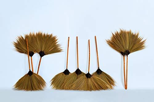 Nature LOUNGE Kehrbesen aus echten Palmenfasern - 5 Stück 75 x 50 cm mit Stiel - Hand Besen aus Kokosfasern - Handmade -