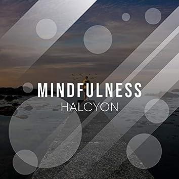 # Mindfulness Halcyon
