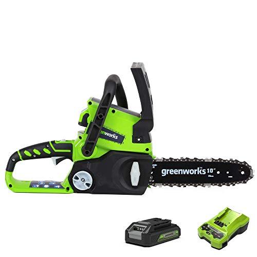 Greenworks Tools Motosierra de 24 V, 25 cm, kit con batería de 2 Ah y cargador (modelo UE)
