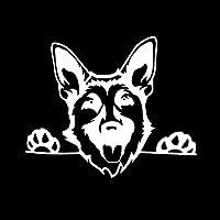 3ピース 15.4X12.7CMカーステッカービニールデカール犬