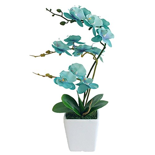 YSZL 15 Inches Tall Artificial Silk Phalaenopsis Orchid Flower Plant Pot Arrangements (Golden Blue)