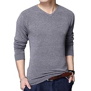 [ベンケ] メンズ セーター Vネック 春 秋 薄手 シンプル 長袖 無地 カジュアル ハイゲージニット M~XL (2XL (日本サイズXL), グレー)