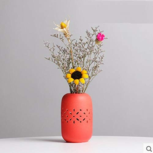 Qnmbdgm vaas voor decoratie van de woonkamer, modern, minimalistisch, bloemontwerp, droogbloem, kast voor wijn, televisie, kast, ornament in de wind