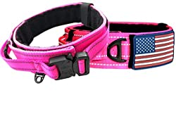 "Diezel Pet Products Dog Collar with Control Handle Quick Release Metal Buckle Heavy Duty Military Style 2"" Width Nylon with USA Flag for Handling and Training Large Canine Male Or Female K9"