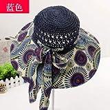 sdssup Frühling und Sommer Neue Exquisite Blume Schatten UV-Schutz handgemachte Hut Loch blau Code