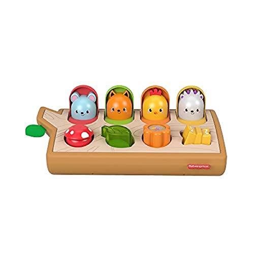 Fisher-Price Cache-cache surprise, jouet d'éveil pour bébé avec éléments sur le thème de la forêt, 9 mois et plus, GJW24