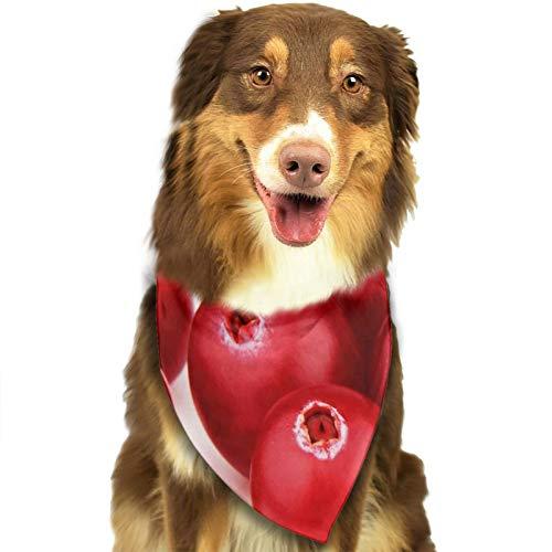 Bandana para Perro Baya Madura Cran Berry, Pañuelos para Perro, Reversibles, Ajustables, Triangulares, Bufandas para Mascotas y Gatos, Regalos Cumpleanos