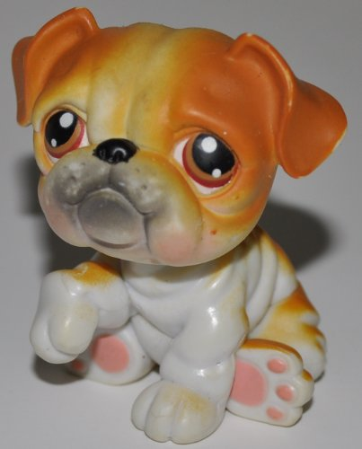 Bulldog #46 (White, Orange Accents) - Littlest Pet Shop (Retired) Collector Toy - LPS Collectible Replacement Figure - Loose (OOP Out of Package & Print)