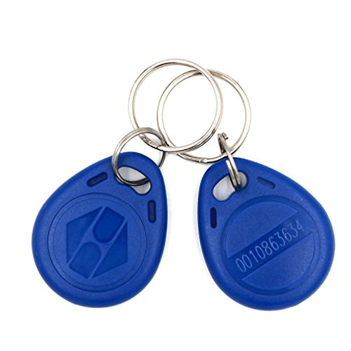 (Confezione da 10) 125KHZ RFID Access Control chiave di prossimità EM4100TK4100Keyfobs portachiavi Smart ID scheda magnetica per porta serratura elettrica sistema NFC tag di testo