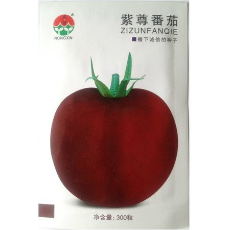 Fruits et graines végétales les graines de tomates pourpres Tomato 300 grains de sac de couleur
