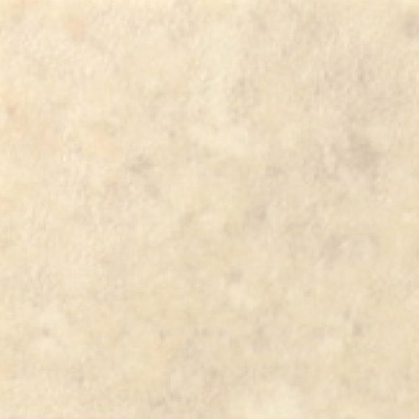ヨーロッパ汚染する戦術サンゲツ クッションフロア 石目 クレマライム (長さ1m x 注文数) 型番: HM-2089 01M