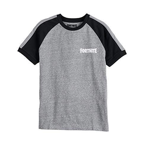 FORTNITE Boys Officially Licensed Logo Character Graphic T-Shirt, Grey...
