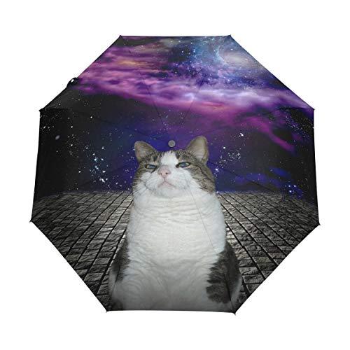 Doreen Dalton Galaxy Nebula Cat Kitten 3 Falten Auto Close Regenschirm