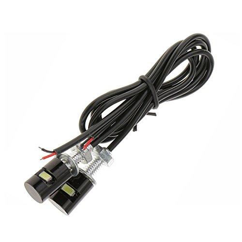 2 x Waterproof Number Plate Lamps Light Bulbs 12V LED Bolt Screw for Motorcycle/Car License Plate Light (White LED Light)