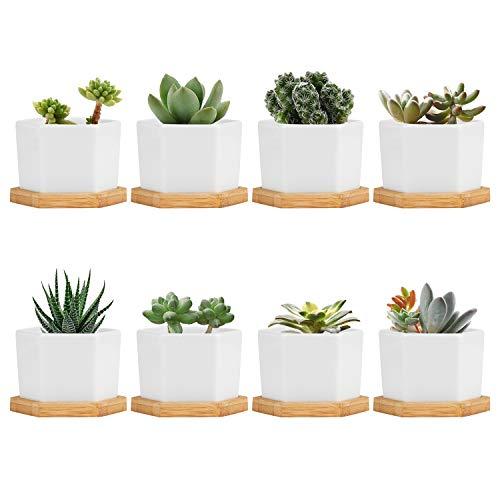 Brajttt Plant Pots, Succulent Pots with Drinage, Ceramic HexagonalPrisms Flower Pots...