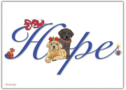 Pipsqueak Productions C574 Labrador Hope Christmas Boxed Cards - Pack of 10