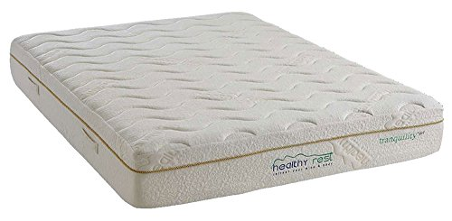 Lowest Price! Healthy Rest Tranquility + Gel Memory Foam Mattress (Twin Long)