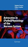Astrocytes in (Patho)Physiology of the Nervous System