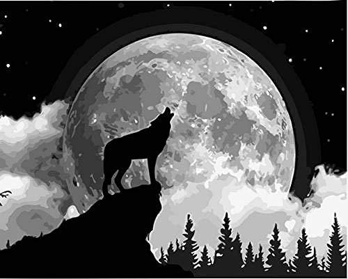 Pintar por número Moon Shadow Lone Wolf DIY Juego de Pintura al óleo 40 * 50CM Lienzo sin Marco decoración del hogar acrílico Pintura de Arte Moderno.