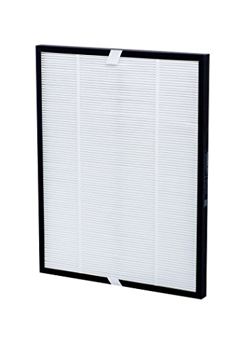 Comedes - Filtro di ricambio per purificatore d'aria Delonghi AC 75, sostituisce il filtro Delonghi 5513710001