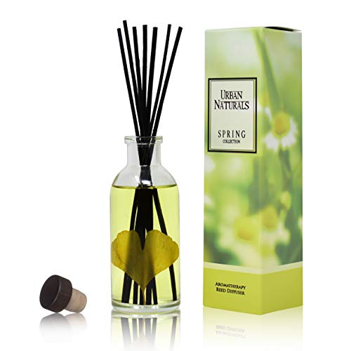 Urban Naturals Oolong Tea Reed Diffuser Scented Sticks Set (RELFLECT + DETOXIFY) Mind & Body Aromatherapy Collection | Essential Oil Botanical Room Scent