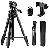 Tripod, 60-Inch Camera Tripod Aluminum for Photography Canon Nikon Sony with Fluid Head & Carry Bag, Lusweimi Video Tripod with Universal Phone Mount & Bluetooth Remote for iPhone Android Phone