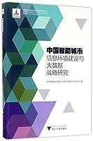 中国智能城市信息环境建设与大数据战略研究/中国智能城市建设与推进战略研究丛书