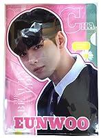 Astro チャ・ウヌ アストロ Eunwoo クリアファイル A4 ClearFile Idolpark (チャ・ウヌ-01)