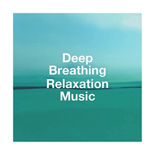 The Relaxation Providers, Relaxation, Zen Music for Relaxation