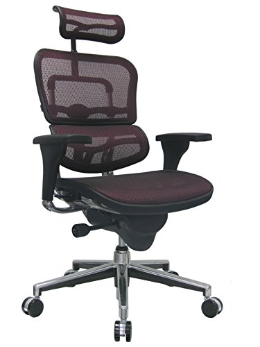 Eurotech Seating Ergohuman High Back Mesh Managers Chair, Plum Red