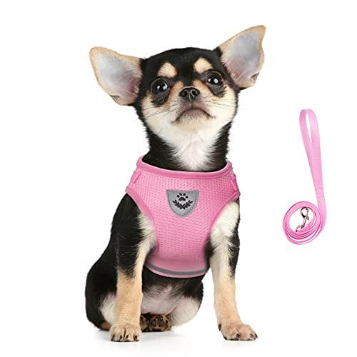 FEimaX Arnés para Perros y Conjunto de Correa, Pequeña Chaleco para Acolchado de Malla Suave para Cachorros y Gatos, Correas Reflectante Ajustable Transpirable para Entrenamiento, Correr