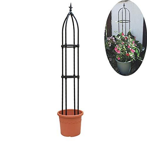 PLHMS - Gartengestaltung & Rankhilfen
