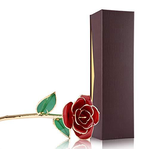 zjchao Echte Blumen getaucht in 24 Karat Gold für die Dekoration des Home-Office zum Geburtstag einer Freundin 11 Zoll Rot 2