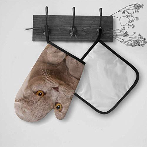 Kotdeqay Isolierhandschuhe mit niedlicher Katze, für Jugendliche, isolierte Handschuhe, Ofenhandschuh und Topflappen, Set, wasserdicht, hitzebeständig, für BBQ, Kochen, Backen, Grillen, Grillen