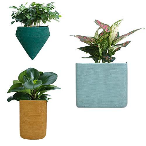 3 x Künstlich Sukkulenten Topfpflanzen künstlich Pflanzen Topf drinnen//draußen