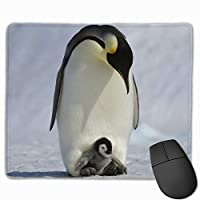 マウスパッド 子供 ペンギン Mousepad ミニ 小さい おしゃれ 耐久性が良 滑り止めゴム底 表面 防水 コンピューターオフィス ゲーミング 25 x 30cm