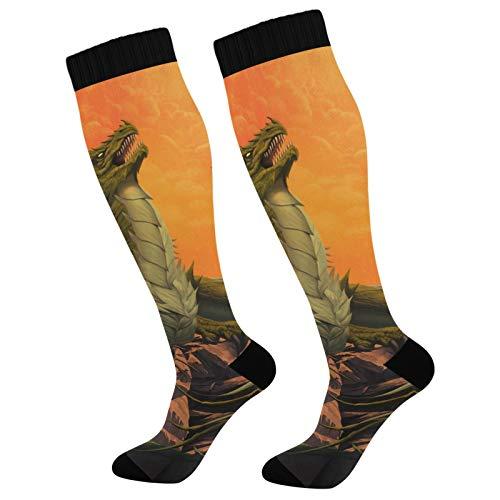 PUXUQU Socken Strümpfe Fantasie Tier Drachen Herren Damen Kniestrümpfe Socken 1 Pack