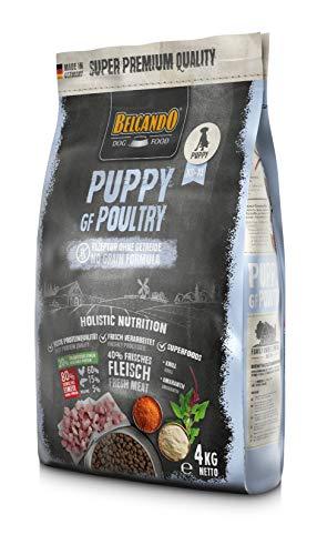 Belcando Puppy GF Poultry [4 kg] getreidefreies Welpenfutter | Welpenfutter ohne Getreide | Alleinfuttermittel für Welpen bis 4 Monate