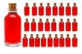 casavetro 100 ml kleine Flaschen Mini-TR inklusive Korken Glasflasche klar Likörflaschen 25 st (25 x 100 ml)