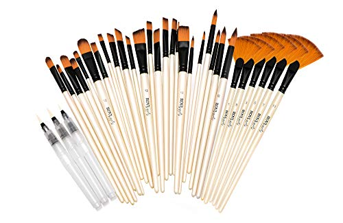 30 Acrylic Artist Paint Brushes Professional Set & 3 Watercolor brush set Pen -Assorted Small & Large Gouache Art Paint brush kit case - Oil Painting Brushes -Water Color Paintbrush set for kids craft