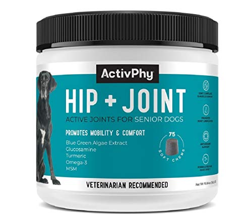 Top 10 best selling list for supplement for dogs necessary