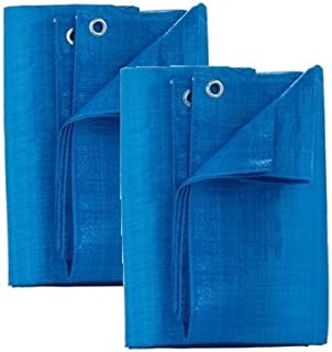 HomePlus Multi Purpose 4 Ft By 6 FT Light Weight Poly-Tarp P46-88W (2 Pack)