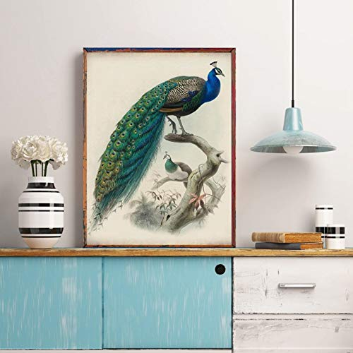 QAZEDC kunstdruk linnendecoratie schilderij pauw vogel vintage stijl drukken poster muurkunst perkament papier oud boek illustratie antiek canvas schilderij huis room decoratie