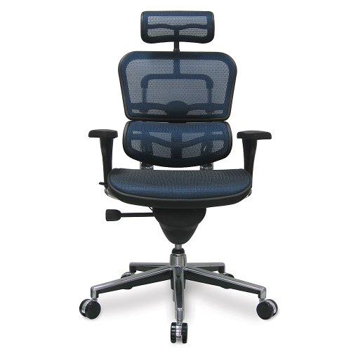"""Ergohuman Eurotech Mesh Chair - 18.1A 22.9"""" Seat Height - High-Back Chair with Headrest - Blue - Blue"""