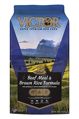 VICTOR Beef Meal and Brown Rice Formula Dry Dog Food