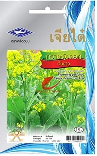 PLAT FIRM GRAINES DE GERMINATION: 3 Packungen: 4350 Samen Thai Gemüse Speiserapspflanze Chia Tai Gesundheit vitamine Faser-Garten